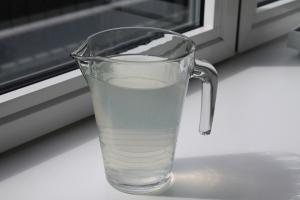 Suikervrije limonade met citroen en munt