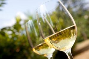 white-wine-in-glasses